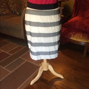 Skirt by Ann Taylor in Dark Blue and White
